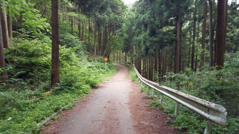 醍醐林道のダート