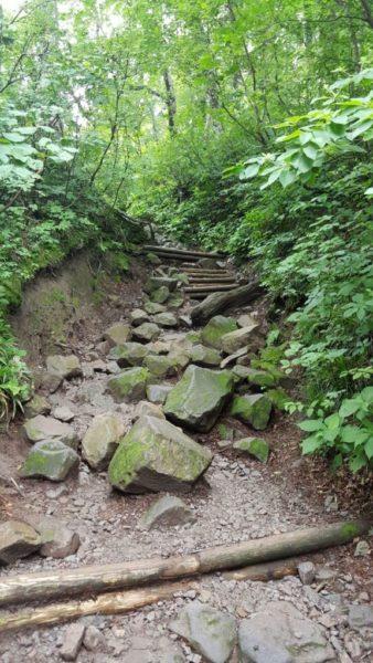 鳥取大山の登山道