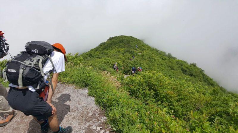 夏山登山道の山頂付近