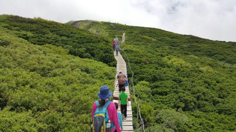 大山山頂の遊歩道