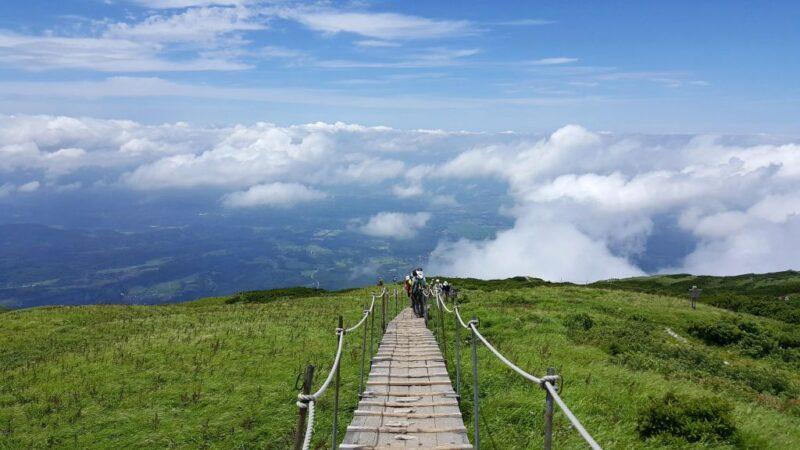 大山山頂からの眺め