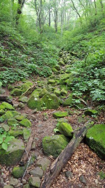 大山の岩場