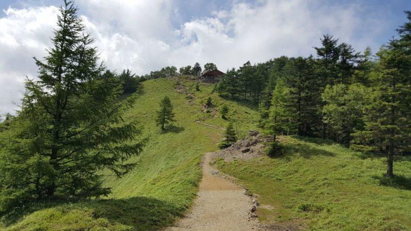 雲取山山頂付近の坂