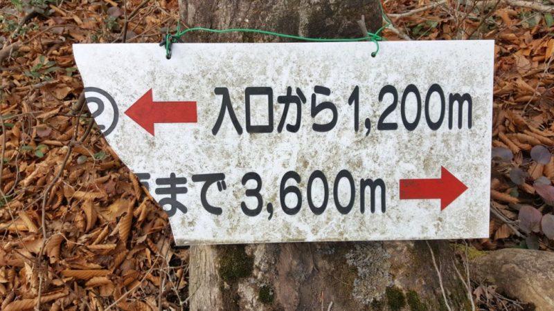 能郷白山の道標