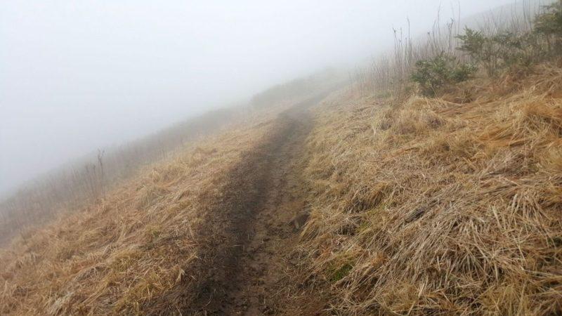 能郷白山、山頂の分かれ道